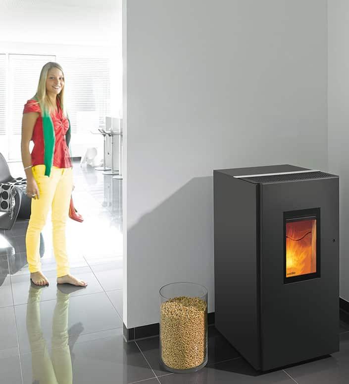 wodtke pat pelletofen schneider solar kluge energiekonzepte. Black Bedroom Furniture Sets. Home Design Ideas